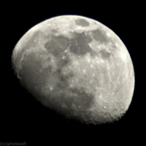 Foto del Día - Luna Cuarto Creciente - Phylosoft