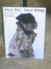 Un perrito bien vestido